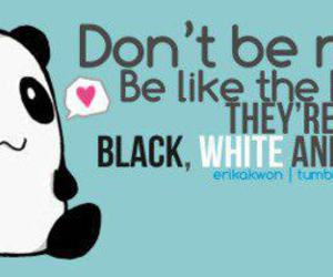 asian, black, and panda image
