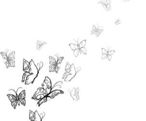 butterflies, drawing, and sky image