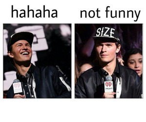 ansel, boys, and laugh image