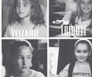 divergent, harry potter, and emma watson image