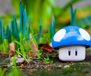 cute, mushroom, and blue image