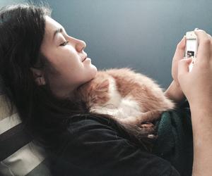 cat, sleep, and kitten image