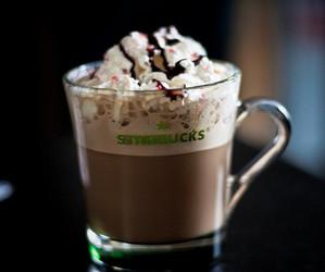 starbucks, drink, and chocolate image