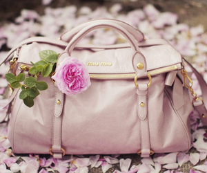 bag, fashion, and miu miu image