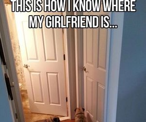 funny, dog, and girlfriend image