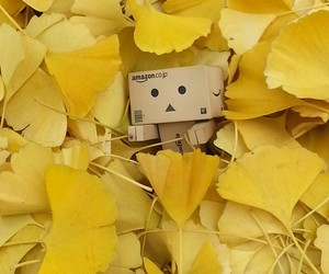 danbo, ginkgo, and yellow image