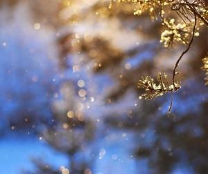 amazing, blue, and light image