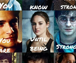 harry potter, narnia, and the hunger games image