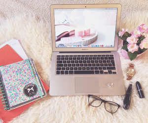 books, essentials, and flowers image