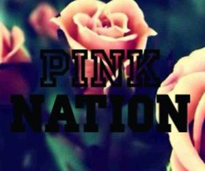 pink, rose, and victoria secret image