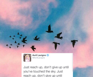 Avril, Avril Lavigne, and background image