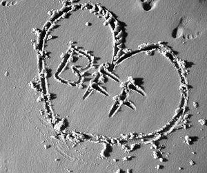 best friend, bff, and heart image