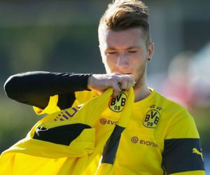 bvb and marco reus image