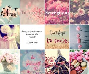 be free, I adore you, and citation image