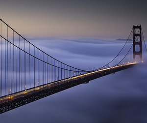 bridge, photography, and fog image