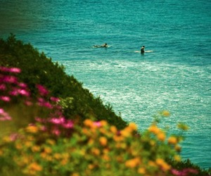 surf, yellow, and blue image