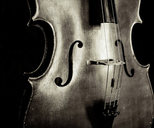 music, black and white, and instrument image