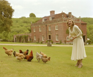 Chicken, nature, and country side image