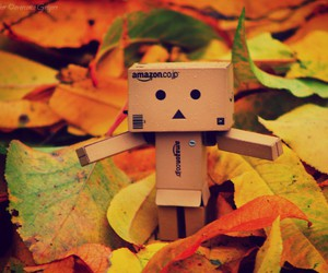 autumn and danbo image