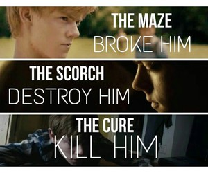 the maze runner and newt image