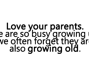 love, parents, and quote image