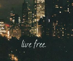 city, light, and live image