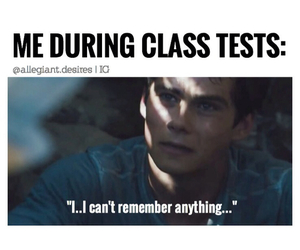 funny, dylan o'brien, and test image