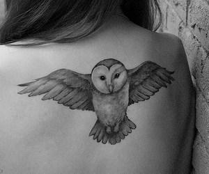 back, owl, and buho image