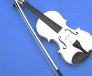 white violin image