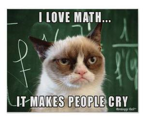 math, cat, and cry image
