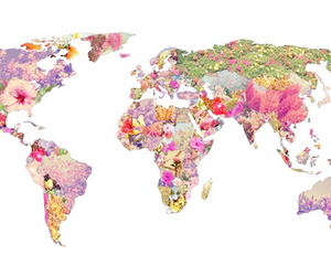 world, flowers, and art image