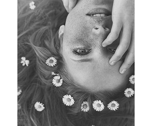 black and white, daisies, and floral image