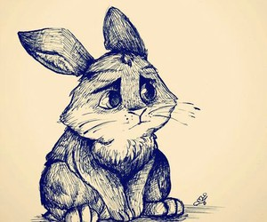 bunny and drawing image