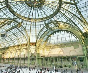 france, grand palais, and paris image