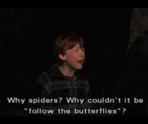 spider and harry potter image