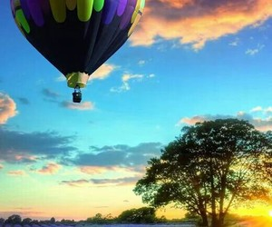 balloon, colorful, and flowers image