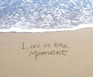 beach, live, and moment image
