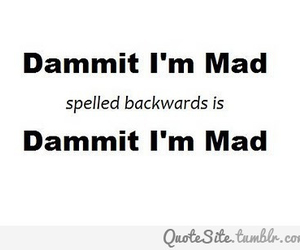 dammit, mad, and quote image