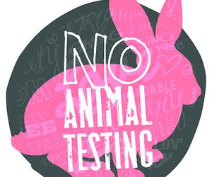 animal, bunny, and pink image