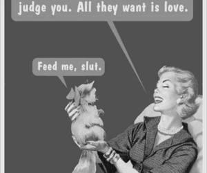 cat, funny, and slut image