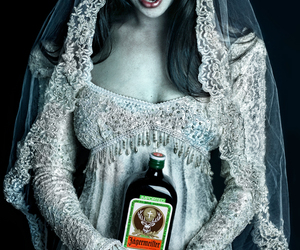 jagermeister, vampire, and girl image