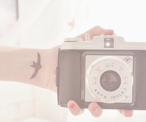 camera, pastel, and pink image
