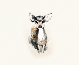 animal, deer, and wallpaper image