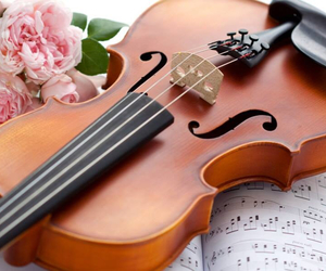 flowers and violin image