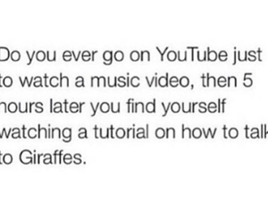 youtube, funny, and lol image