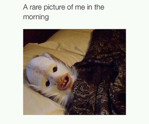 funny, morning, and rare image
