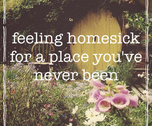 books, harry potter, and homesick image