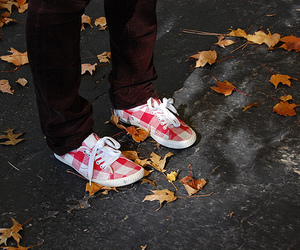 plaid and shoes image
