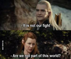 funny, Legolas, and the hobbit image