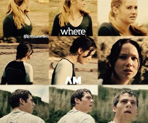 divergent, the maze runner, and book image